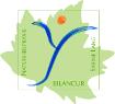 BILANCUR Naturheilpraxis Sabine Lang Logo